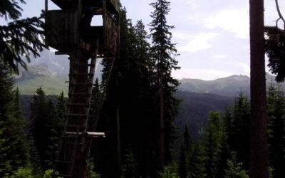 Tour del parco di Paneveggio